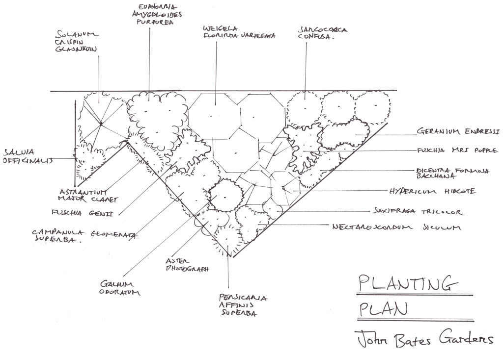 Hand drawn planting plan